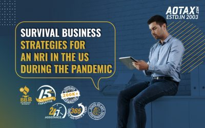 Survival business strategies for an NRI in the US during the pandemic